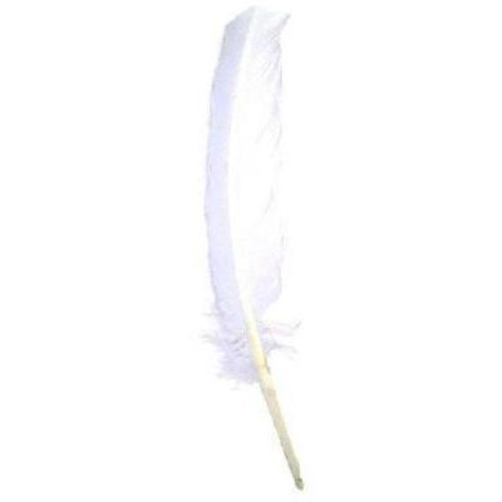 Turkey Wing Quill Feather x 5 pcs - White ((SECONDS))