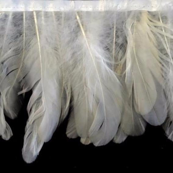 Coque Tail Feathers Strung 100-150mm on Ribbon per 10cm - Off White