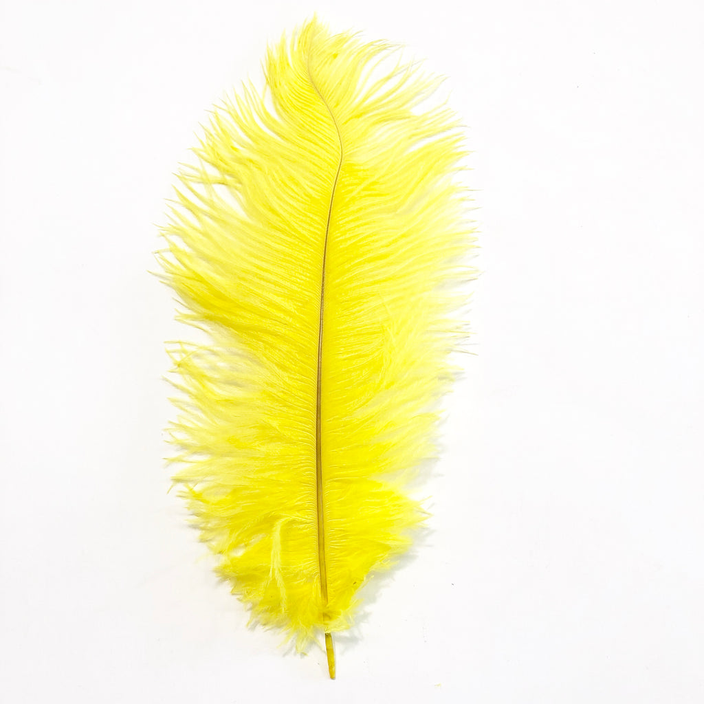 Ostrich Drab Feather 27-32cm - Yellow *Seconds* Pack of 5