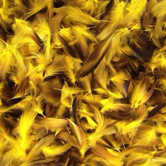 Yellow Mallard Duck Feather Plumage Pack of 10 grams