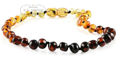 Baltic Amber Necklace for Children - CLEARANCE Teething Jewelry R.B. Amber Jewelry 14-15 inches Rainbow - POP CLASP