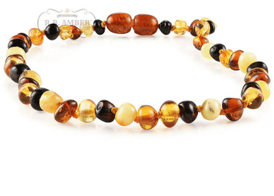 Baltic Amber Necklace for Children - Pop Clasp Teething Jewelry R.B. Amber Jewelry 10-11 inches Multi
