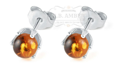 Baltic Amber Stud Earrings Jewelry R.B. Amber Jewelry Honey