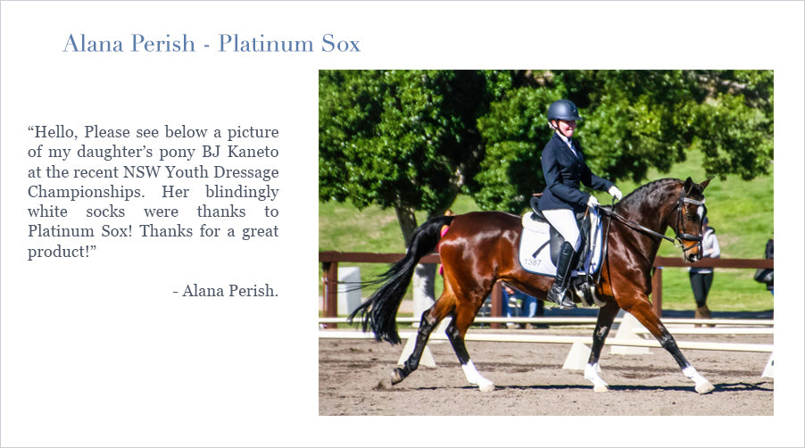 Please see below a picture of my daughter's pony BJ Kaneto at the recent NSW Youth Dressage Championships. Her blindingly white socks were thanks to Platinum Pony's latinum Sox! Thanks for a great product
