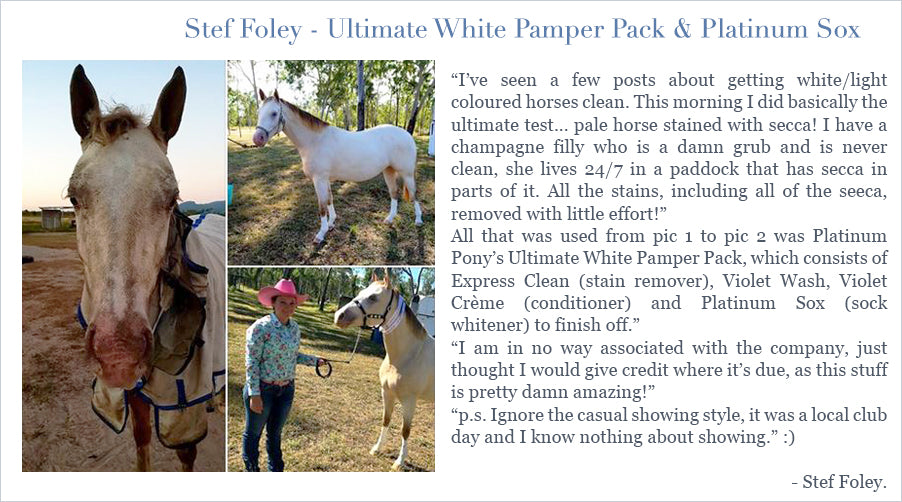 I've seen a few posts about getting white/light coloured horses clean. This morning I did basically the ultimate test... pale horse stained with secca! I have a champagne filly who is a damn grub and is never clean, she lives 24/7 in a paddock that has secca in parts of it. All the stains, including all of the seeca, removed with little effort!  All that was used from pic 1 to pic 2 was Platinum Pony's Ultimate White Pamper Pack, which consists of Express Clean (stain remover), Violet Wash, Violet Crème (conditioner) and Platinum Sox (sock whitener) to finish off. I am in no way associated with the company, just thought I would give credit where it's due, as this stuff is pretty damn amazing!