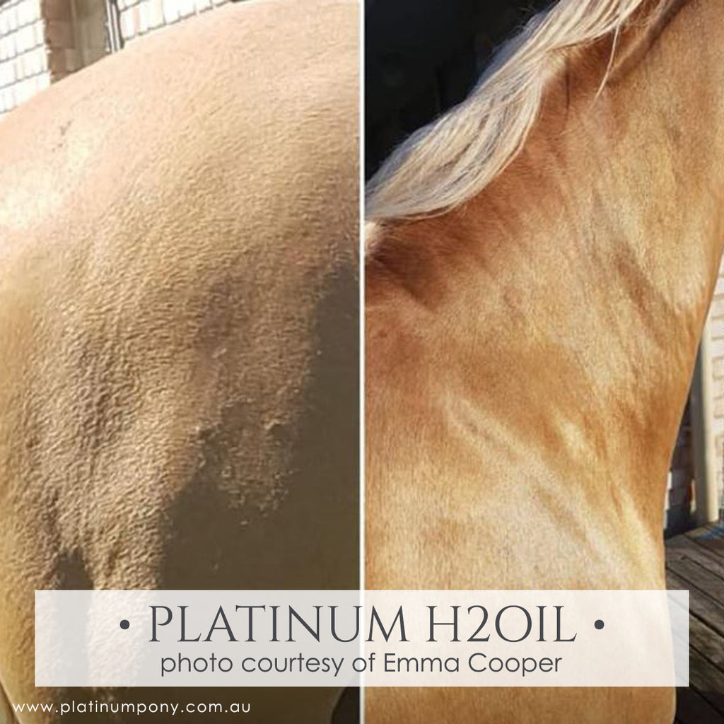 Platinum H2Oil - 250ml
