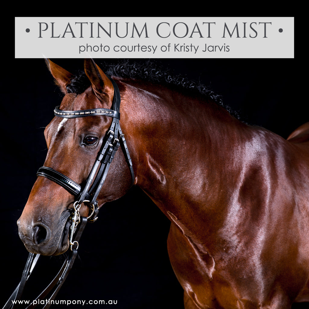Platinum Coat Mist - 1Lt plus Bonus