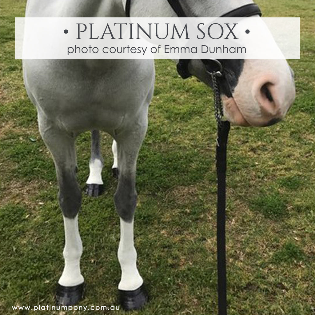 Platinum Sox - 2.5kg plus Bonus