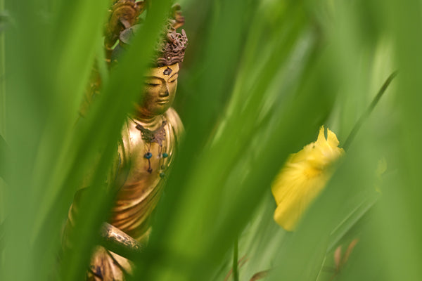 Greeting Card - Buddha in Nature (Butsuzo)