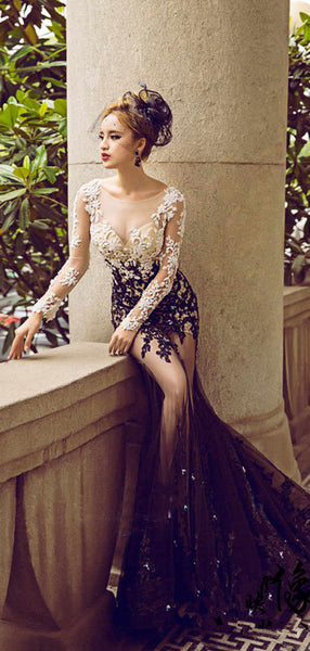 New Arrival See Through Long Sleeve Lace Sexy Mermaid Prom Dresses, Long Prom Dresses, PD0221