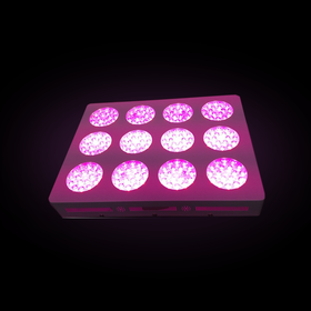 therapeutic grow light