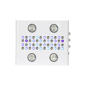 G4 LED Grow Light - 1000W