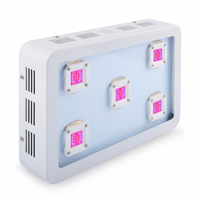 CⅡ5 LED Grow Light - 1000W