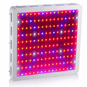 D16 LED Grow Light - 1200W