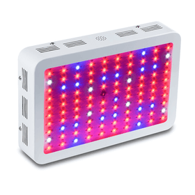 D300 grow light