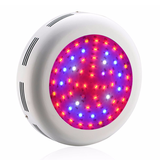 U6 LED Grow Light - 600W