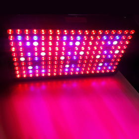 5W9 LED Grow Light - 900W