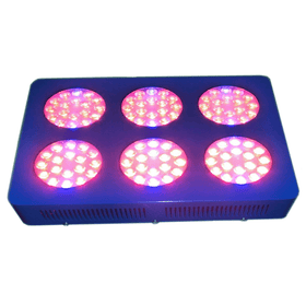 colorful grow light