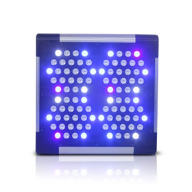 T4 LED Grow Light - 300W