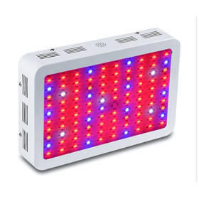 D10 LED Grow Light - 1000W