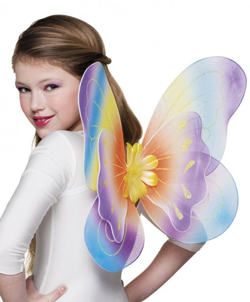 ailes papillon multicolore