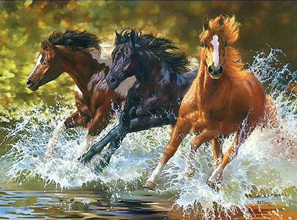 diy painting by numbers running horse 16 x20 40x50cm max