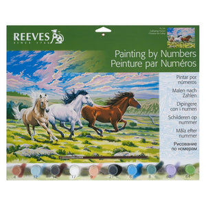 Reeves Painting By Number