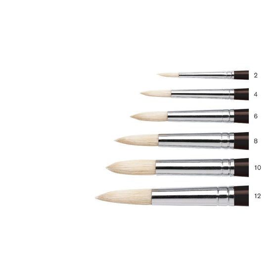 Winsor & Newton Azanta Black Brush - Round - Short Handle