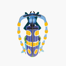Studio Roof 3D Model Wall Decor - Small Rosalia Beetle