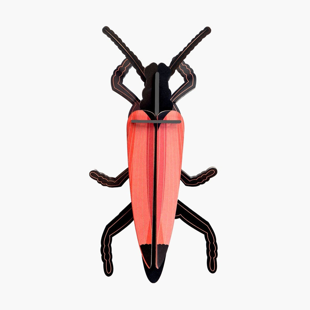 Studio Roof 3D Model Wall Decor - Longhorn Beetle