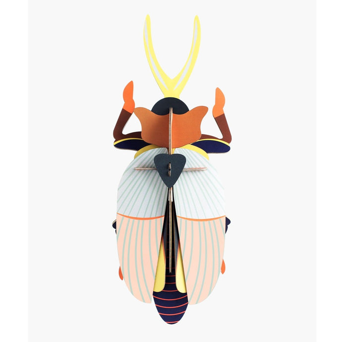 Studio Roof 3D Model Wall Decor - Rhinoceros Beetle