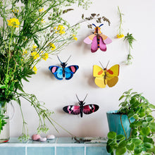Studio Roof 3D Model Wall Decor - Longwing Butterfly