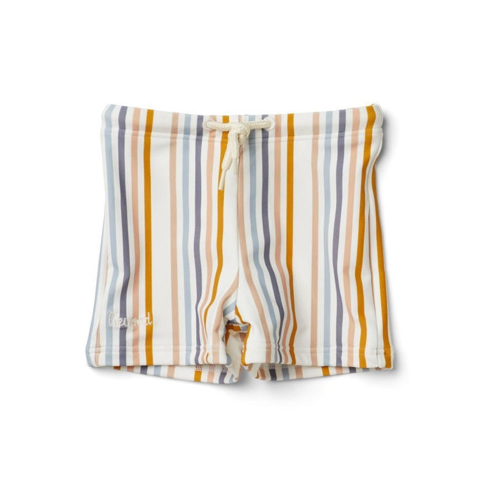 Otto Swim Pants - Multicoloured Stripe