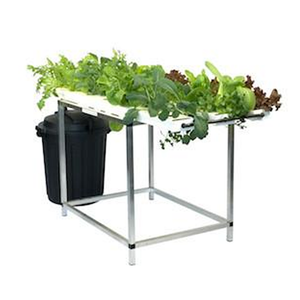 21 Plant Starter Salad Table