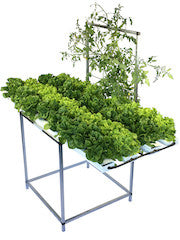 36 Plant Salad Table with Trellis