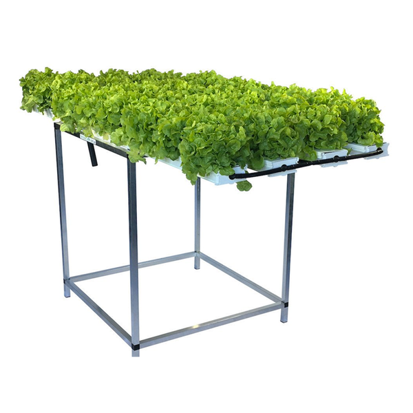 52 Plant Salad Table - SALE $50OFF + $50 FREE Nutrient - ENDS SOON