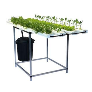 68 Plant Salad Table - SALE $50OFF + $50 FREE Nutrient - ENDS SOON