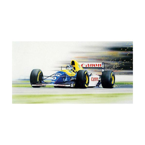 Wayne Vickery - Damon Hill Williams FW15C