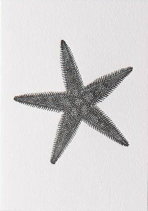 Star Fish Letter Press Card