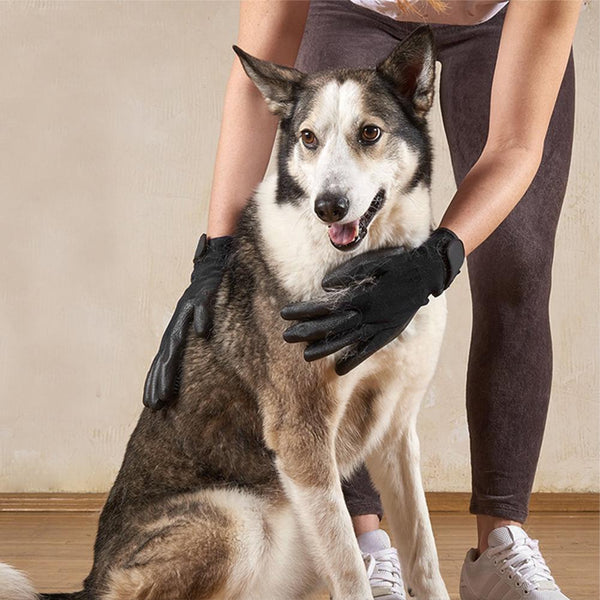 Mane & Fur Pet Grooming Gloves