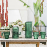 Until Saguaro Cactus Carafe - Until - Gifts - Paloma + Co Adelaide Boutique