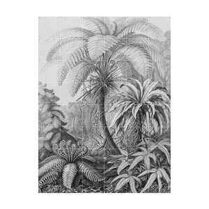 IXXI Wall Art Ferns Wall Art
