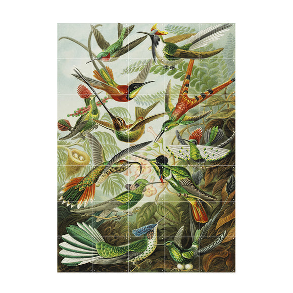 IXXI Wall Art Hummingbirds