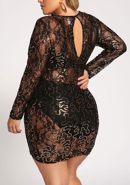 Embellished lace mesh dress....queen sizes...