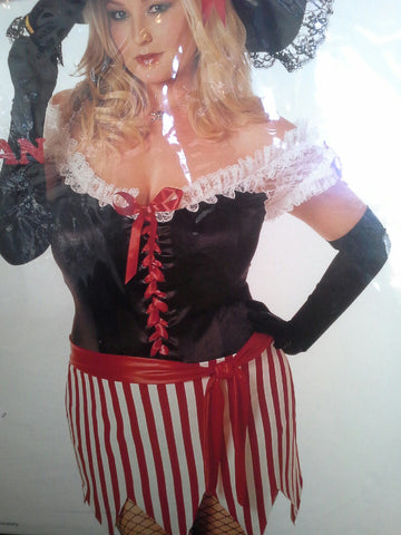 Sexy Pirate Costume (queen sizes)