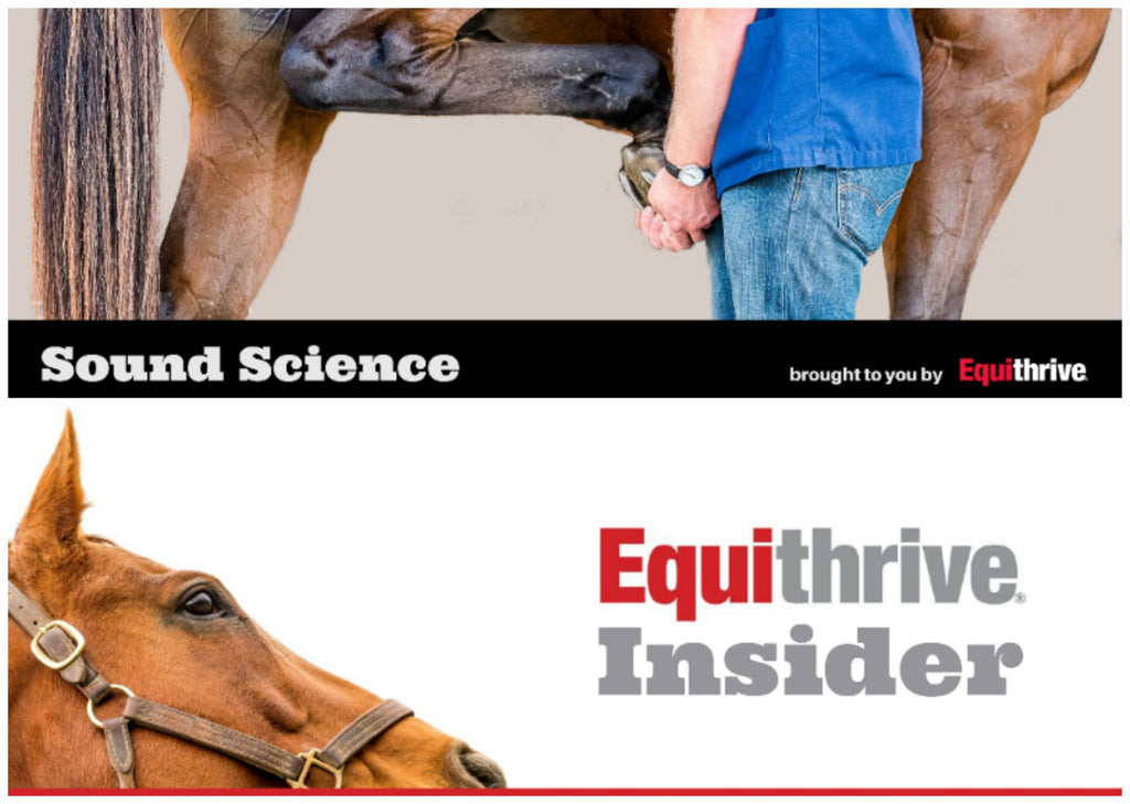 EQUITHRIVE® LAUNCHES E-NEWSLETTERS: HORSE HEALTH, RESEARCH AND PROMOTIONS FEATURED