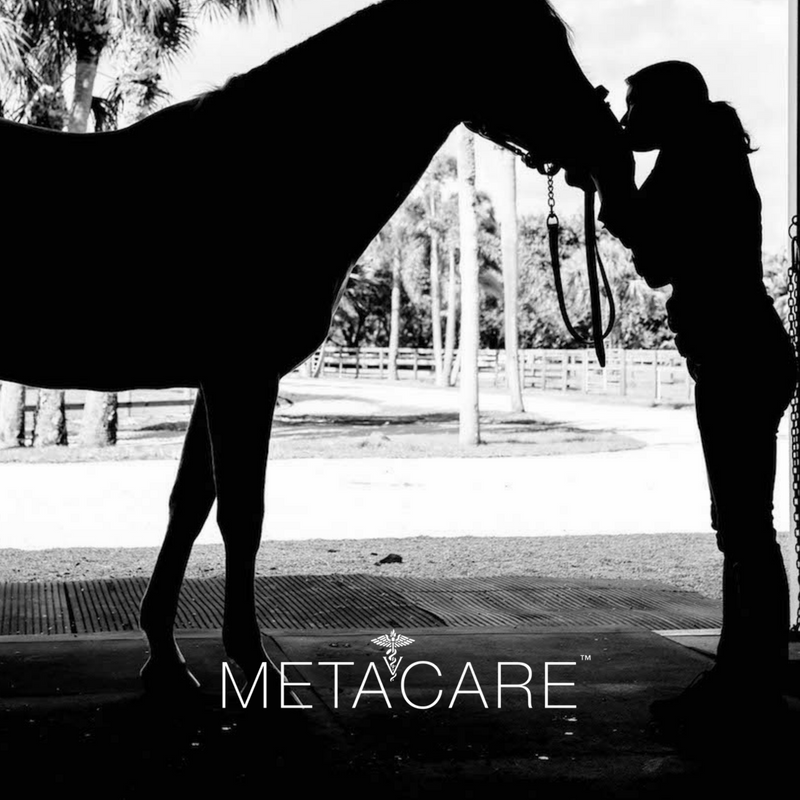 Introducing Metacare™ from Equithrive