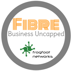 Frogfoot Business Uncapped Fibre