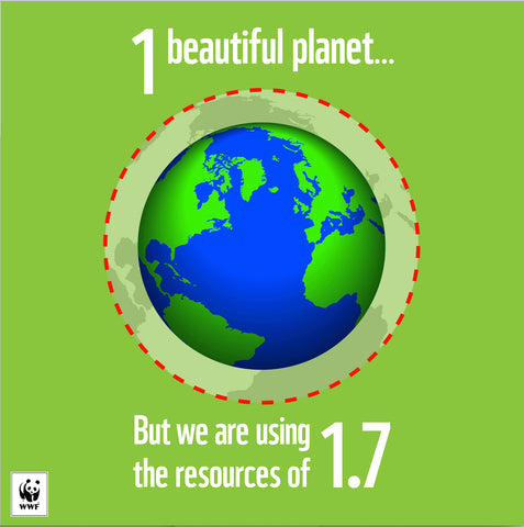 "Imagem ""Earth Overshoot Day"" - Face It Vegan Beauty"