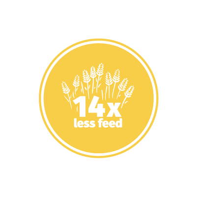 crickets use 14 times less land than cows design icon